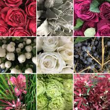 wholesale flowers denver dwf wholesale flower home