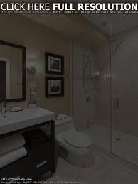 bathroom remodeling ideas for handicap best bathroom decoration