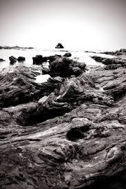 best 25 corona del mar beach ideas on pinterest