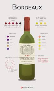 learn about st julien bordeaux bordeaux wine 101 the wines and the region wine folly