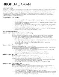 Administrative Assistant Example Resume Vice President Of Sales Resume Resume For Your Job Application