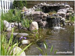 backyards enchanting backyard pond building small pond building
