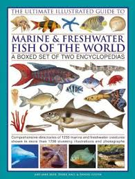 freshwater fish identification guide related keywords