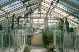 free images nature growth plant farm house flower interior