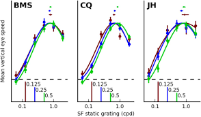 a motion from form mechanism contributes to extracting pattern download figure