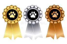 dog ribbon dog show winner ribbon rosette stock vector illustration of