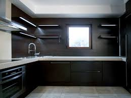 Modern Dark Kitchen Cabinets Bathroom Cute Cool Modern Kitchen Cabinets Black Wood Material