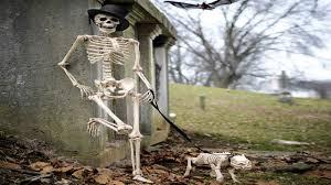 Dog Skeleton Halloween Decoration by Nightcore Skeleton Inside Me Weshipit Youtube