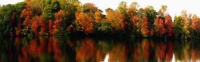 Pumpkin Patch Louisburg Nc by North Carolina Obituaries Legacy Com