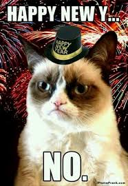 Grumpy Cat New Years Meme - yes i am not agreeing with grumpy cat tonight i love new years