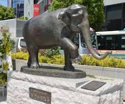 statue of elephant hanako unveiled in front of kichijoji station