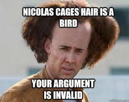 Your Argument Is Invalid Meme - argument invalid meme bird hair w630