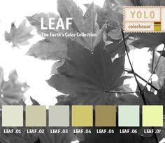 i am obsessed with yolo colorhouse i saw this paint color at