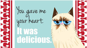 Grumpy Cat Meme Valentines Day - 18 grumpy cat valentines for your crabby companion grumpy cat