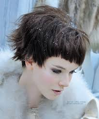 short haircut with ear showing youthful short hair mid ear length haircut with a longer neck