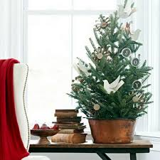real mini christmas tree with lights home decorating small christmas tree on the table interior design