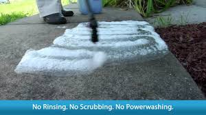 How To Remove Lichen From Patio Wet And Forget The Best Moss Mold Mildew Algae Stain Remover Youtube
