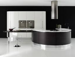 black kitchen cabinets design ideas 35 best modern kitchen design ideas images on modern