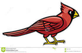 cardinal bird stock vector image 48513637