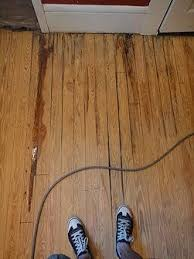 a by guide to repairing a water damaged wood floor