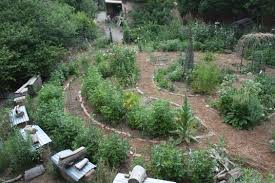 how to make a permaculture garden permaculture institute
