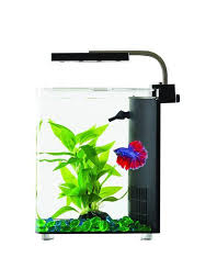 Blue Planet Betta Cube Aquarium 9L