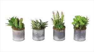 best benefits of using artificial plants in office look