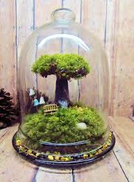 best 25 miniature trees ideas on fondant definition