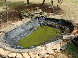 triyae com u003d koi pond in small backyard various design