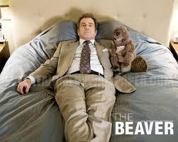 the beaver wallpaper 10026247 1280x1024 desktop download