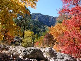 Autumn Colors The 10 Best National Parks To Visit In Fall Curbed
