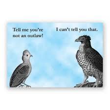 mincing mockingbird guide to troubled birds outlaw lovebirds magnet u2013 the mincing mockingbird u0026 the frantic