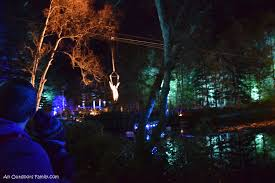 enchanted forest of light tickets a night at the enchanted forest an outdoors family