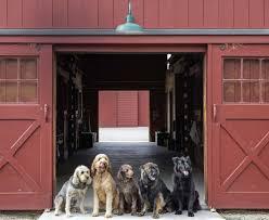 dog barn american farm u2014 di biase filkoff architects