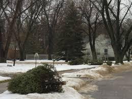 Christmas Tree Pick Up Manitowoc Sets Christmas Tree Pickup