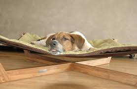 a hip eco friendly hammock for dogs or cats from pet lounge