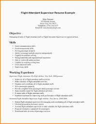 Resume Format For Aviation Ground Staff Cabin Crew Description Resume 28 Images Flight Attendant