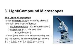 compound light microscope uses topic 3 microscopes