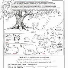 food chains and food webs worksheet answers worksheet resume