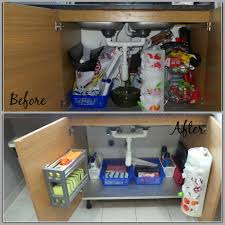 Before And After Organizing by Organizing Under Kitchen Sink Theorganizingqueens