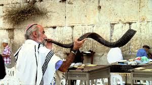 buy shofar horn western wall ram s horn shofar 2 sound hi res 737816