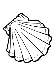 printable seashell coloring pages coloring me