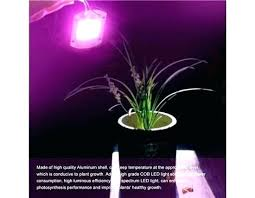 light stands home depot home depot indoor plants indoor plant pots with saucers stupendous