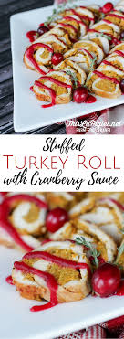 stuffed turkey roll with cranberry sauce vitamix recipe this lil