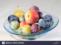 diffrent fruits like plums yellow plums peaches in a fruit bowl