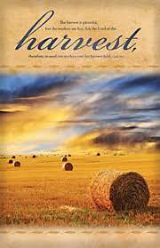 plentiful harvest thanksgiving bulletin lifeway christian bulletin