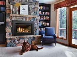 Contemporary Gas Fireplace Insert by Modern Contemporary Gas Fireplace Inserts Gas Fireplaces Andrew