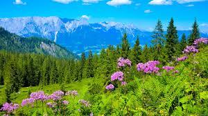 beutifull beautiful austria youtube
