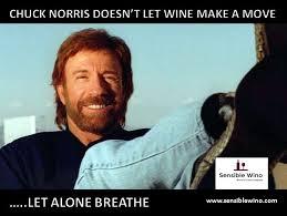 Chuck Norris Funny Meme - chuck norris jokes gift beard chuck norris jokes teh meme wiki