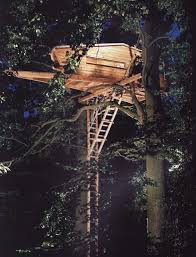 Amazing Tree Houses by Amazing Treehouses Kids Have The Right Idea Unfinished Man